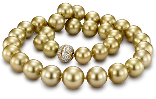 Golden-South-Sea-Pearls